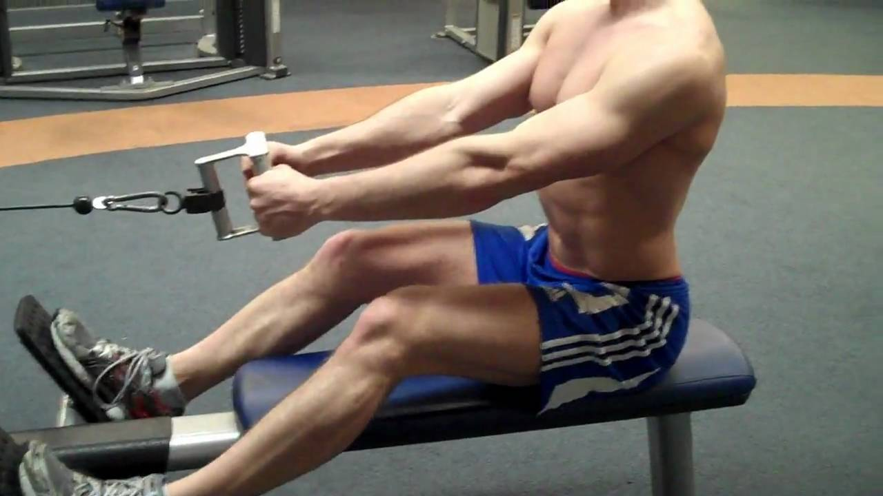 Seated Cable Row Exercise - Bodybuilding Wizard