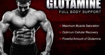 Glutamine - The King of Amino Acid