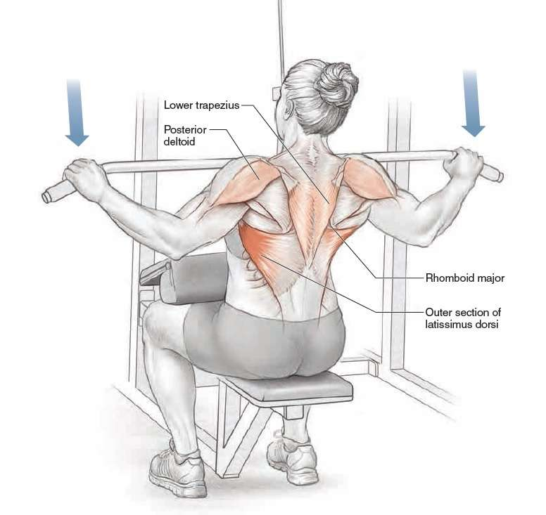Wide Grip Lat Pulldown Exercise