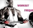 Workout Frequency