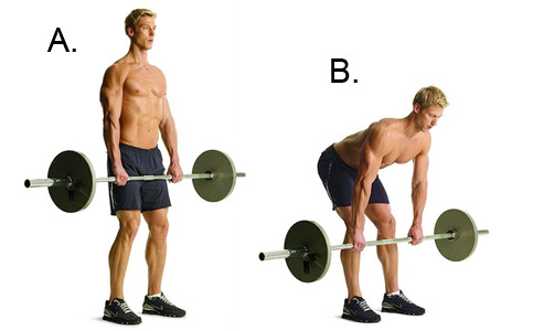 Stiff Leg Deadlift Exercise