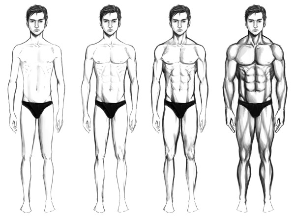 Body Type Combinations