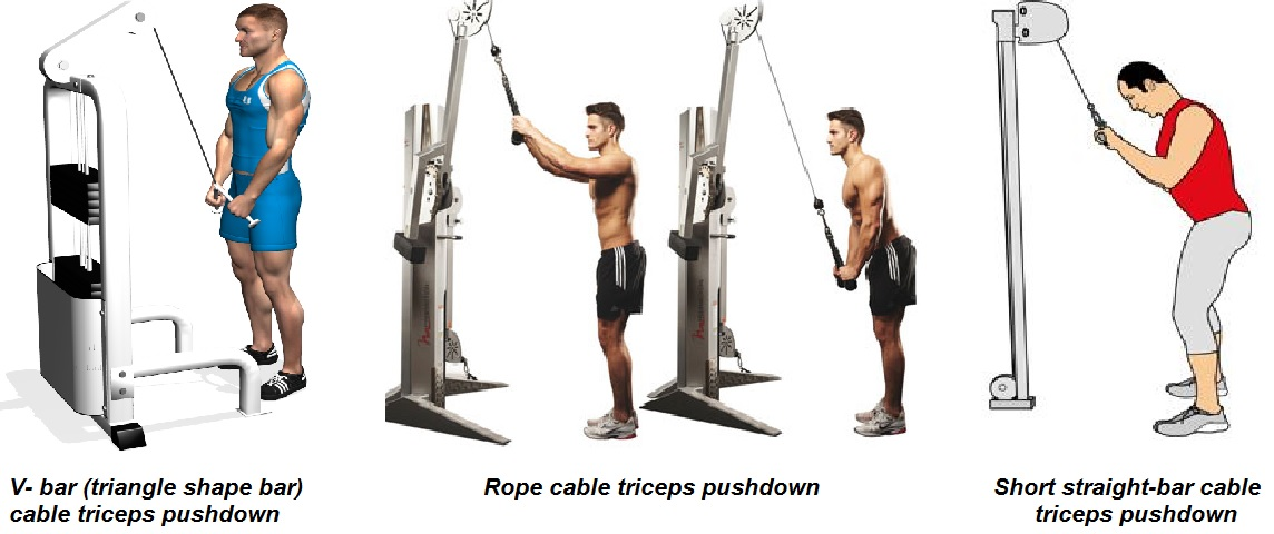 Reverse grip straight bar pushdowns