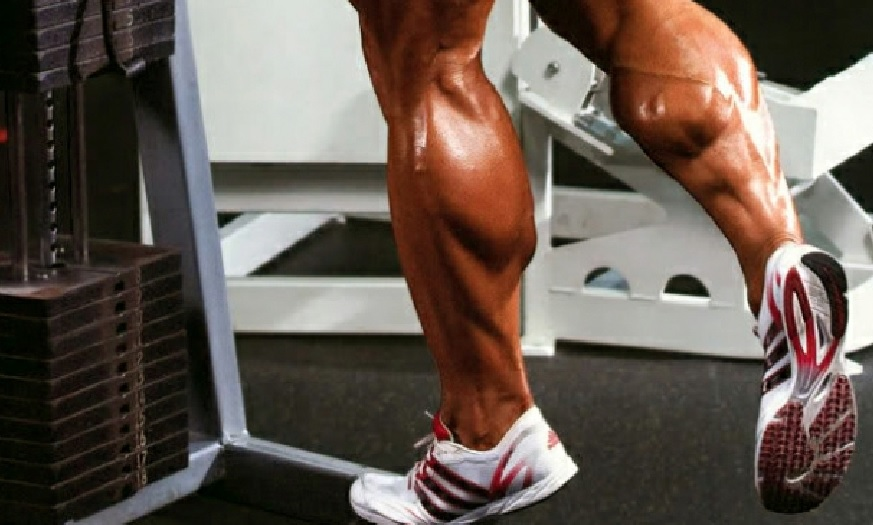 how to build up calf muscles without weights