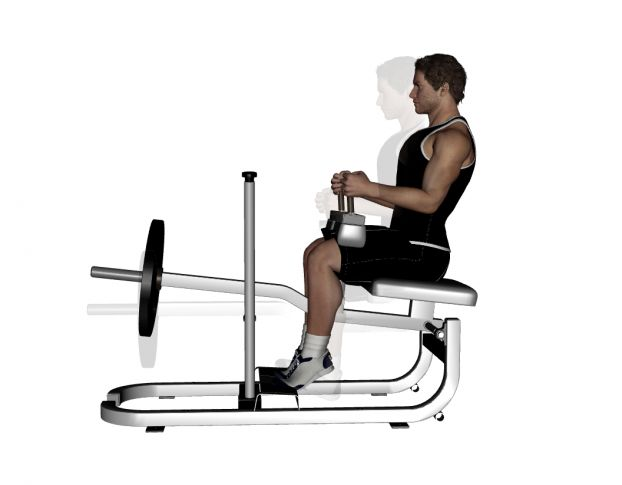 Machine Seated Calf Raise Exercise