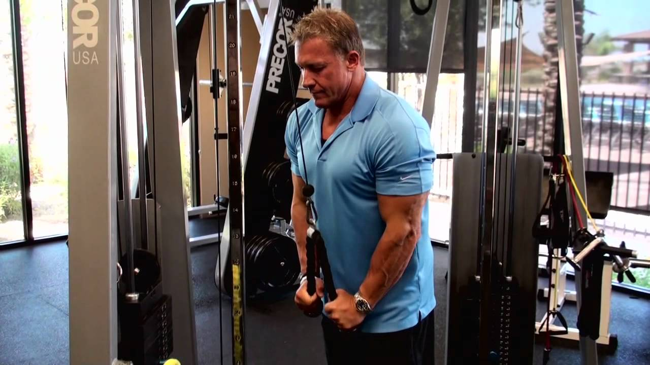 Cable Triceps Pushdown Exercise • Bodybuilding Wizard