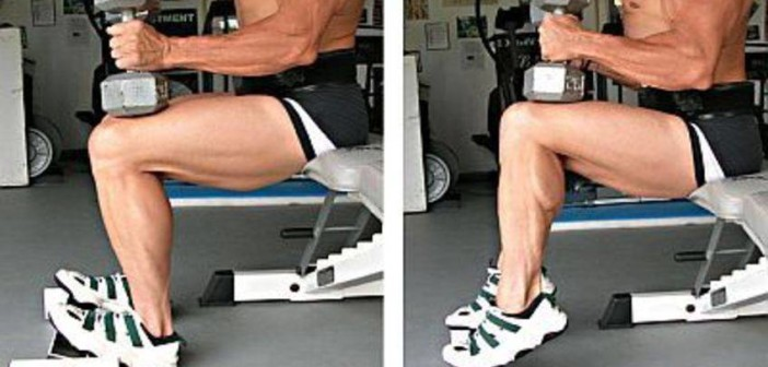 Dumbbell Seated Calf Raise