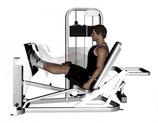 45-Degree Leg Press • Bodybuilding Wizard