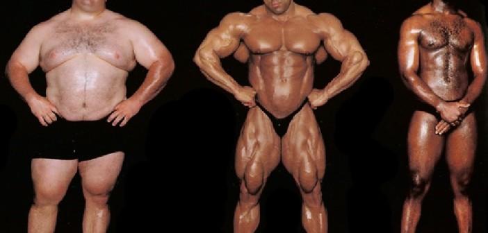 Training for the endomorph body type