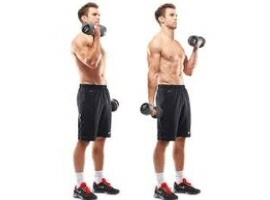 Alternating standing dumbbell biceps curls - without supination