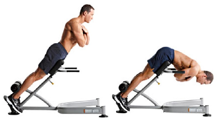 45 Degree Back Extension Hyperextension Bodybuilding Wizard