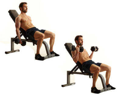 Incline Dumbbell Biceps Curl • Bodybuilding Wizard