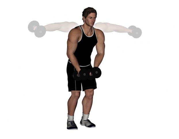 Standing Dumbbell Lateral Raise Exercise