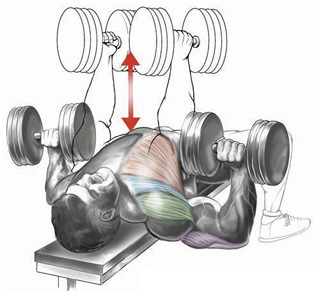 Variable-grip flat bench dumbbell press