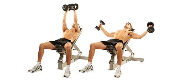 Incline Bench Dumbbell Fly Exercise