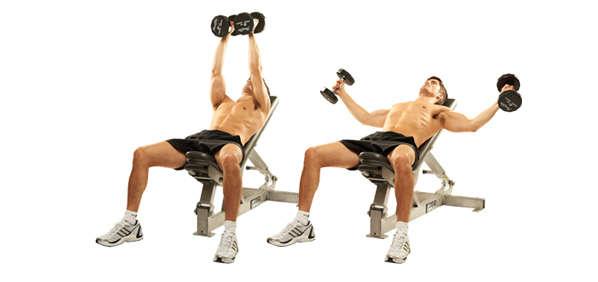 انحدر مقاعد البدلاء ممارسة الدمبل