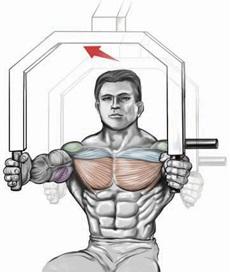 Machine Chest Press - Neutral Grip
