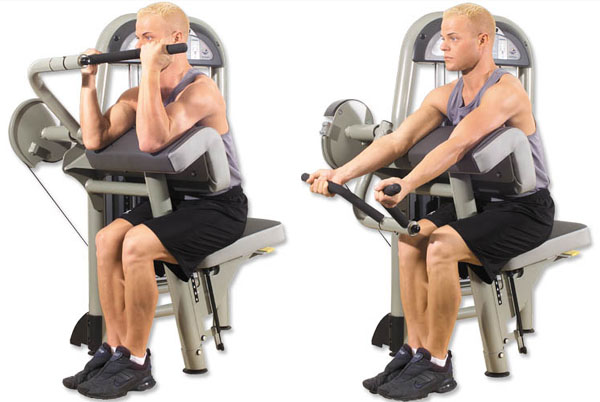 Machine preacher curls or machine biceps curls