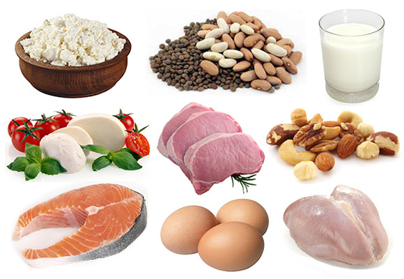 Image result for protein food
