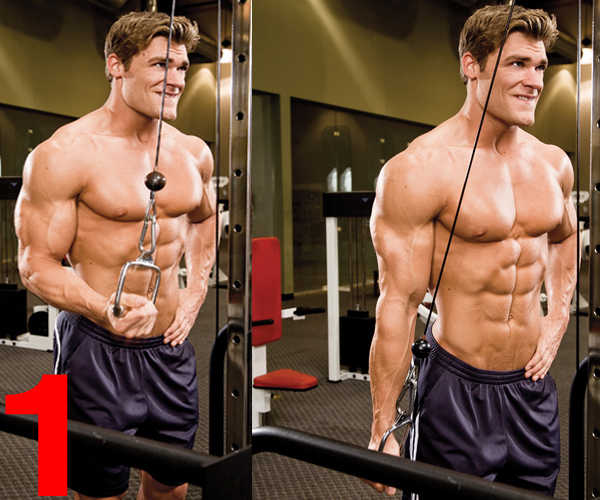 Push Pull Cables >> Reverse Grip Cable Triceps Pushdown • Bodybuilding Wizard