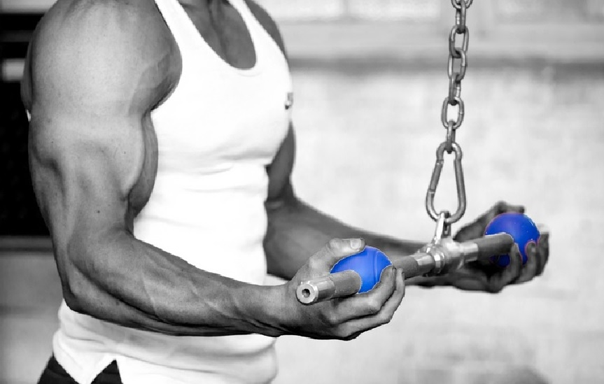 Reverse Grip Cable Triceps Pushdown Bodybuilding Wizard