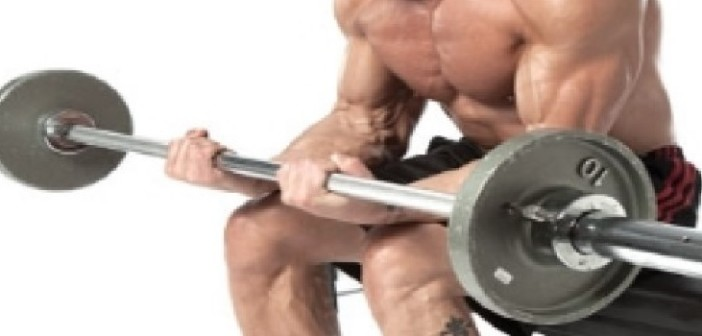 Seated Wrist Curl Bodybuilding Exercise