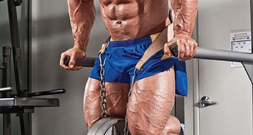 Chest Dips Bodybuilding Wizard