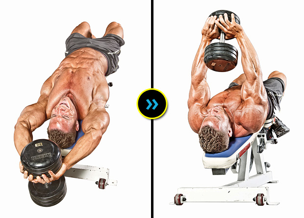 Dumbbell Pullover Exercise Guide Bodybuilding Wizard