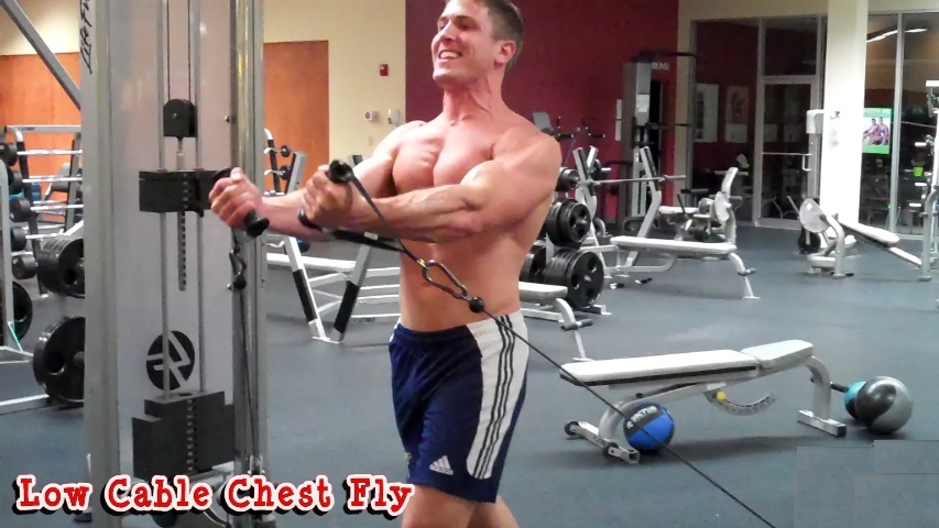 Low Pulley Cable Fly Bodybuilding Wizard