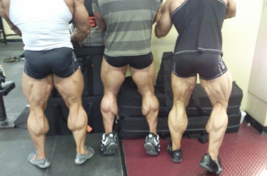 Calf Muscles Bodybuilding Wizard