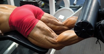 massive hamstring muscles