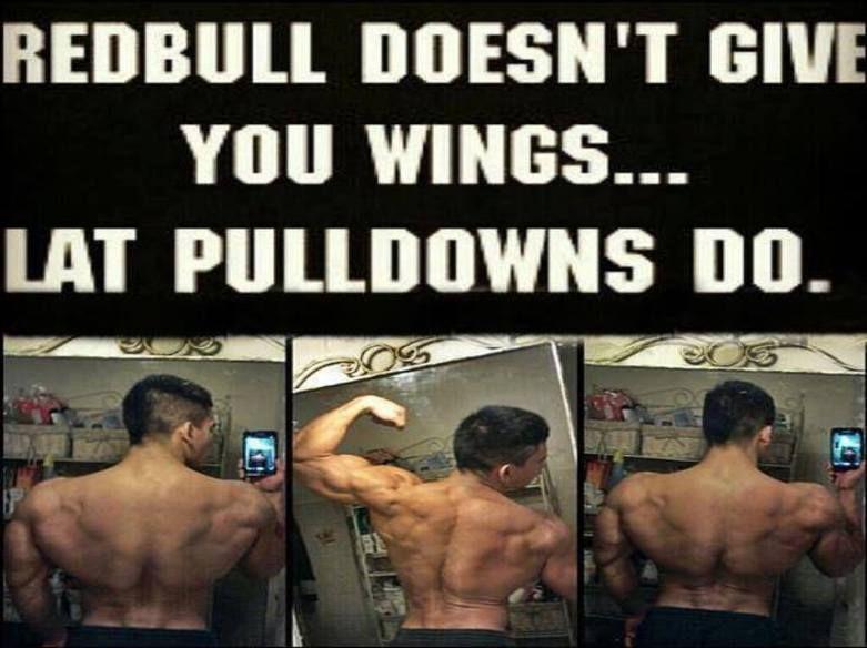 Workout Motivation Meme Funny : Motivational bodybuilding posters u2022 bodybuilding wizard