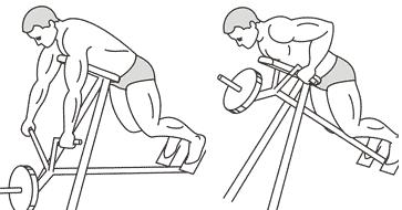 Supported T-Bar Rows