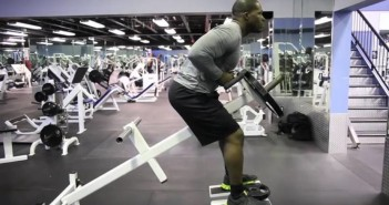 T-Bar Row Exercise Guide