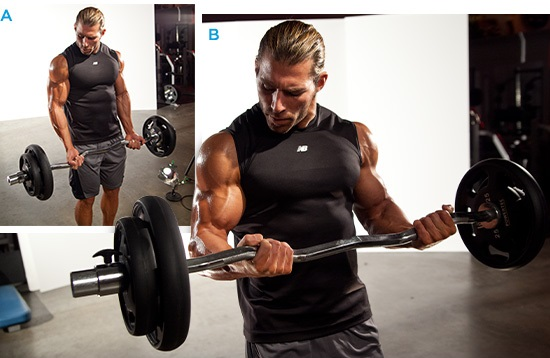 Biceps curl with E-Z bar
