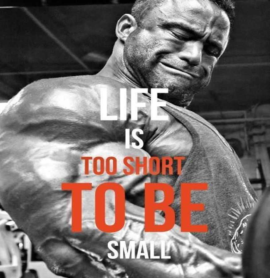 Superieur Bodybuilding Quotes