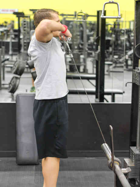 Cable Upright Row Exercise Guide
