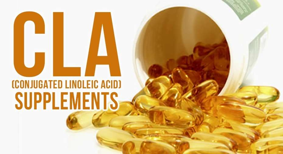 You are at: Home » Supplements » Conjugated Linoleic Acid – CLA