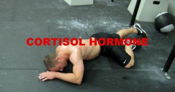 Cortisol Hormone
