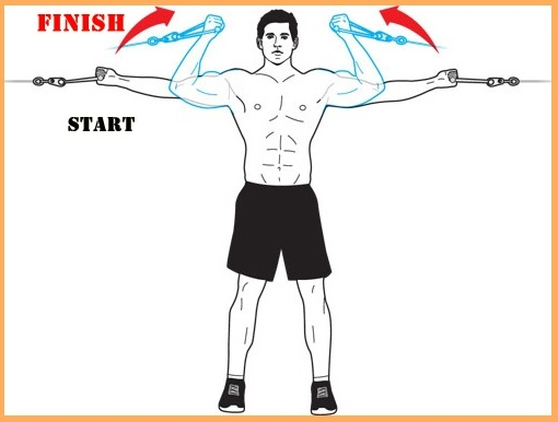High-Pulley Curl Exercise Guide • Bodybuilding Wizard