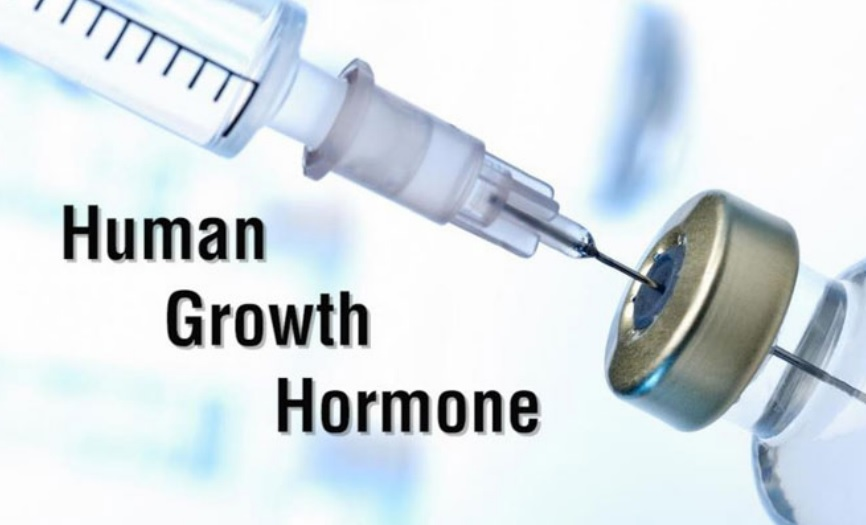 Human Growth Hormone • Bodybuilding Wizard
