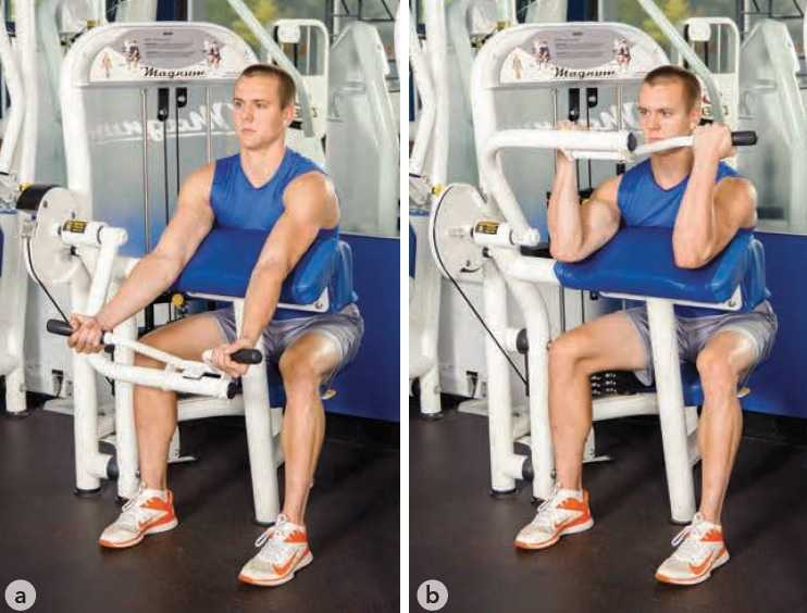 Machine Biceps Curl Exercise