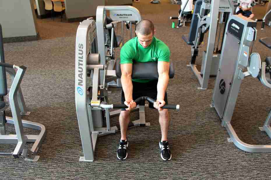 Machine Biceps Curl Exercise Bodybuilding Wizard