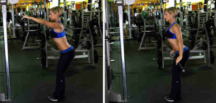 Straight-Arm Lat Pull-Down