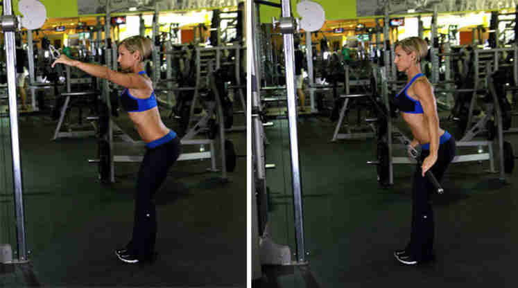 Straight-Arm Lat Pull-Down • Bodybuilding Wizard