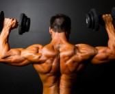 Bodybuilding Anatomy: Shoulders