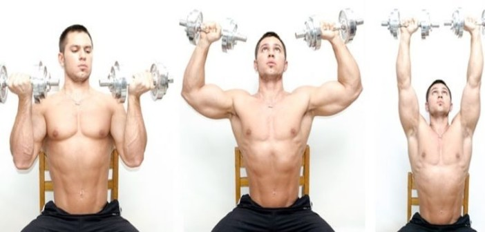 Arnold Press Exercise Guide