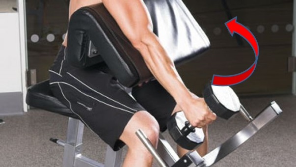 One-Arm Dumbbell Preacher Curl With Twist