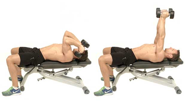 Lying Triceps Press Lying Dumbbell Triceps...