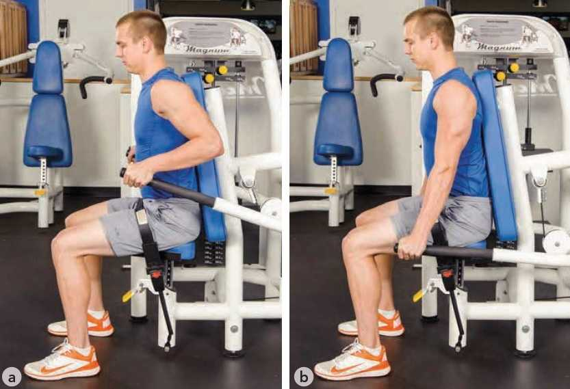 Seated Machine Dips